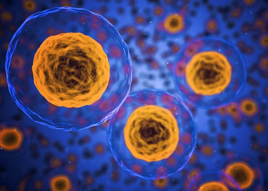 cell and gene - designing a cGMP cleanroom